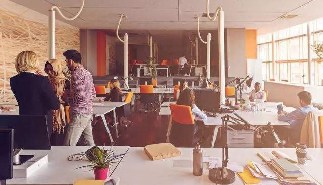 miejsce pracy biuro pracownicy